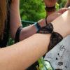 noeud_papillon_accessoire_bracelet_dentelle_noir